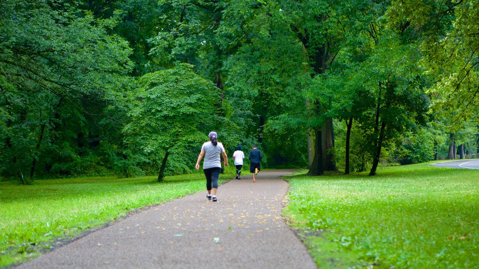 Branch Brook Park featuring a park and hiking or walking as well as a small group of people