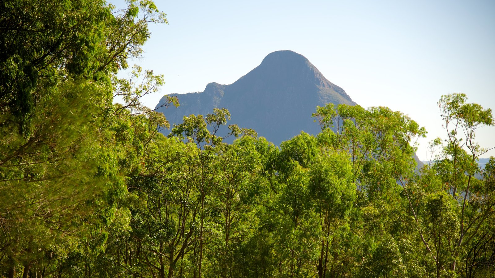 Glasshouse Mountains National Park featuring forests and mountains