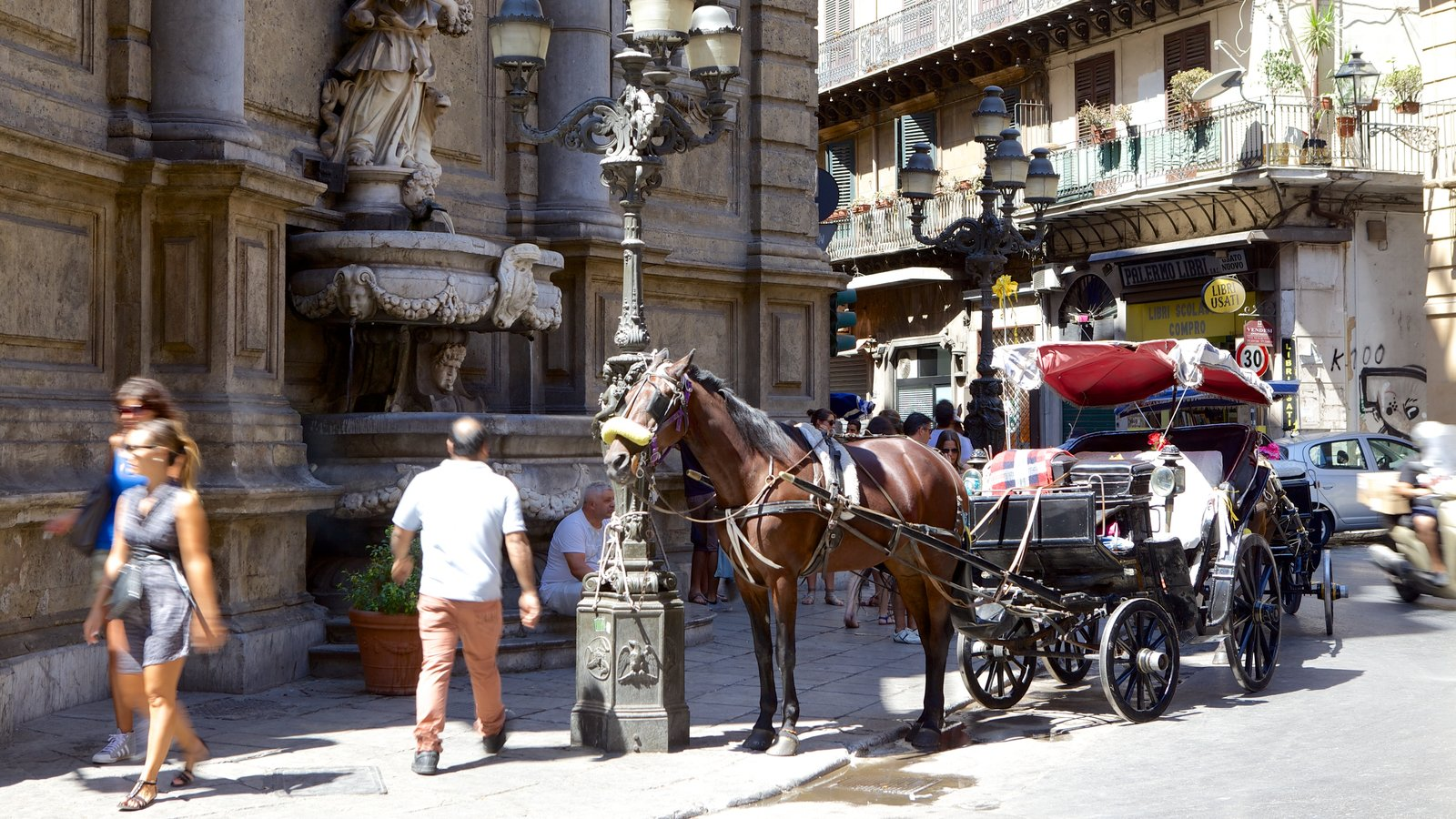 Via Maqueda que inclui cenas de rua, elementos de patrimônio e animais terrestres