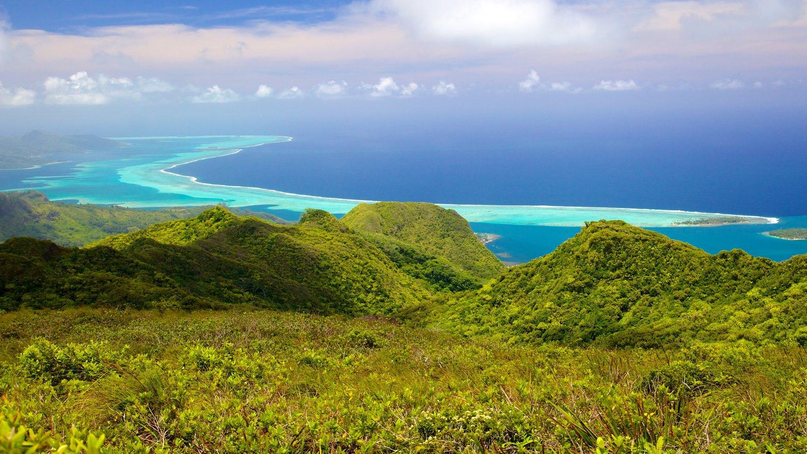 Polinesia Francesa que incluye vistas de paisajes y vistas generales de la costa