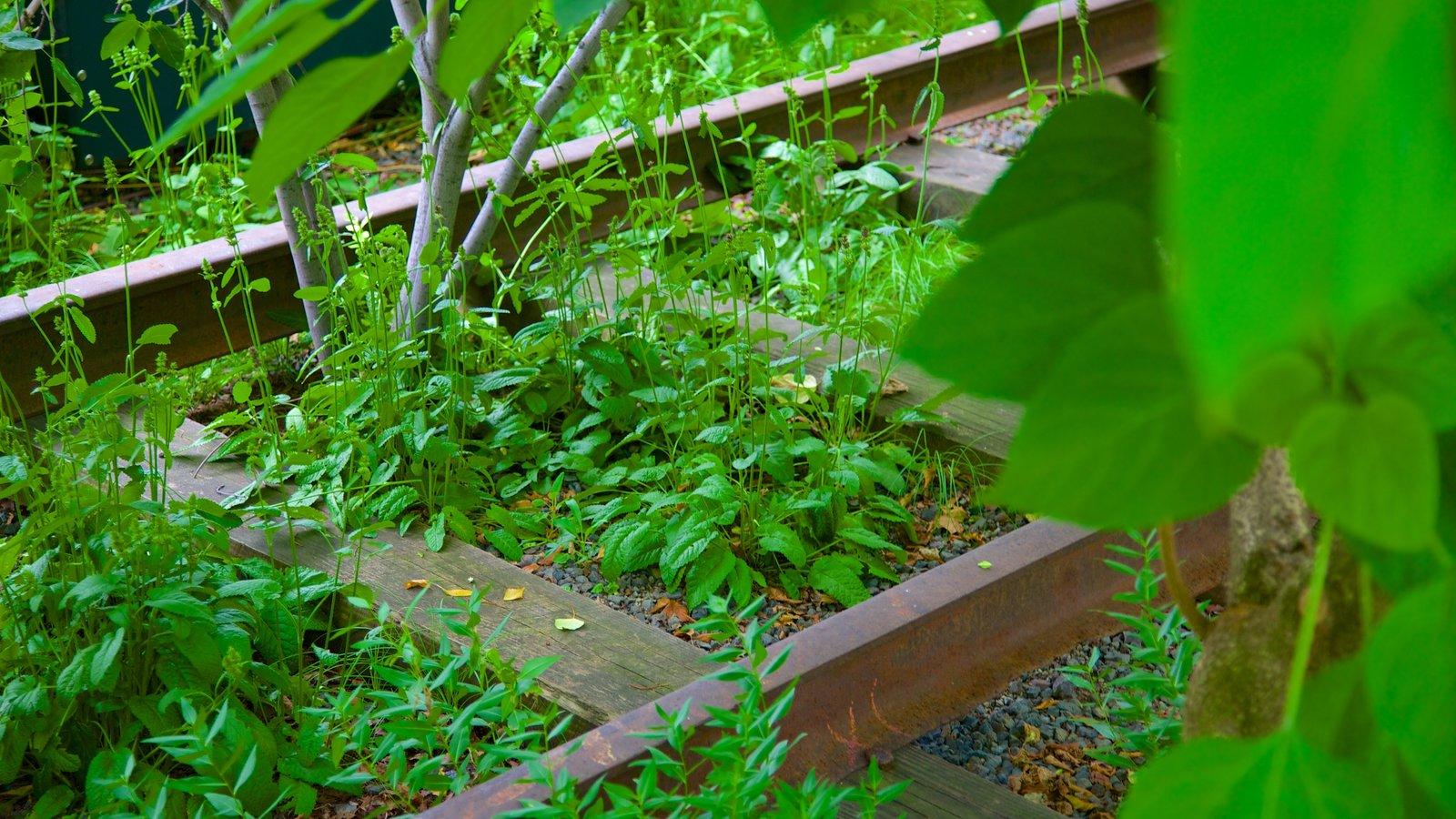 The High Line Park caracterizando um jardim