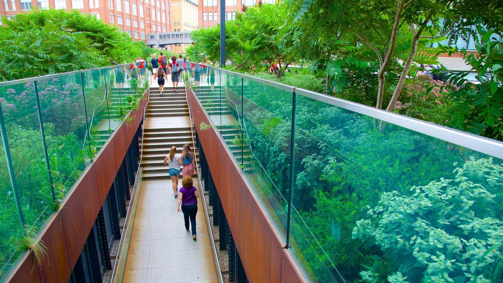 The High Line Park que inclui um parque assim como um pequeno grupo de pessoas
