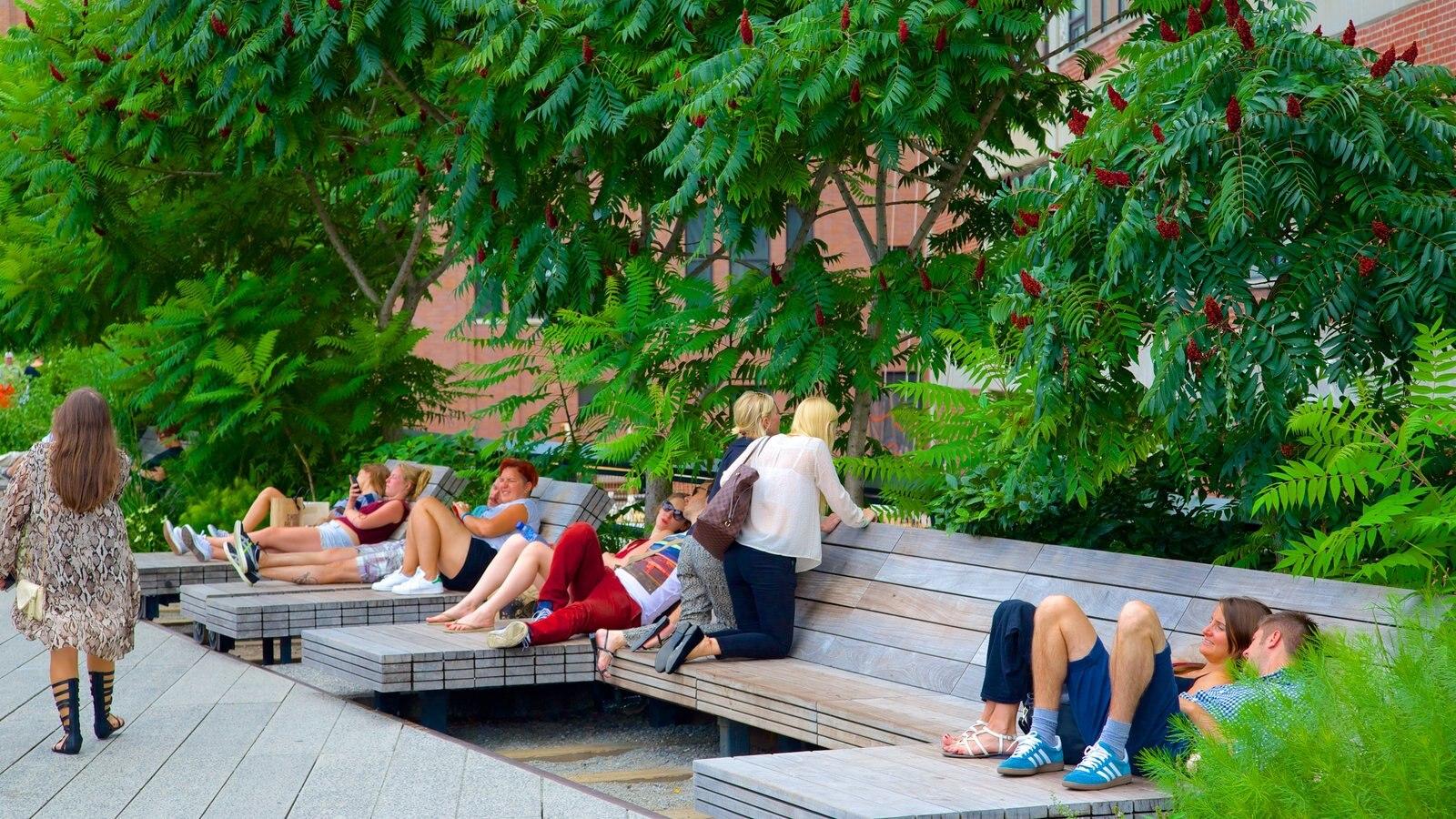 The High Line Park mostrando um parque assim como um pequeno grupo de pessoas