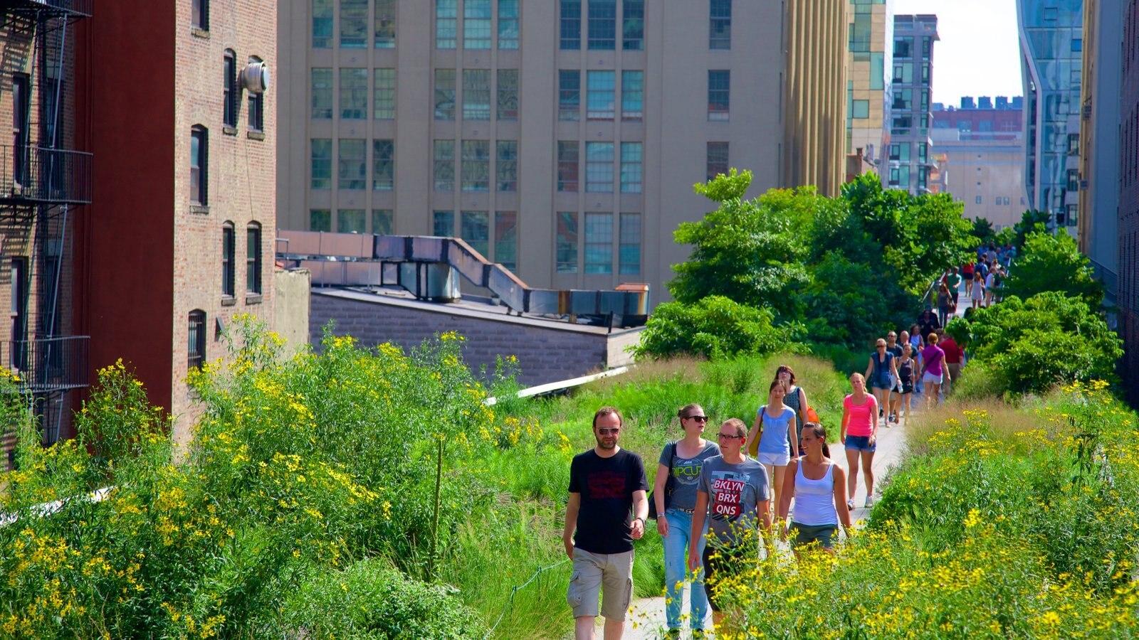 The High Line Park mostrando uma cidade assim como um grande grupo de pessoas