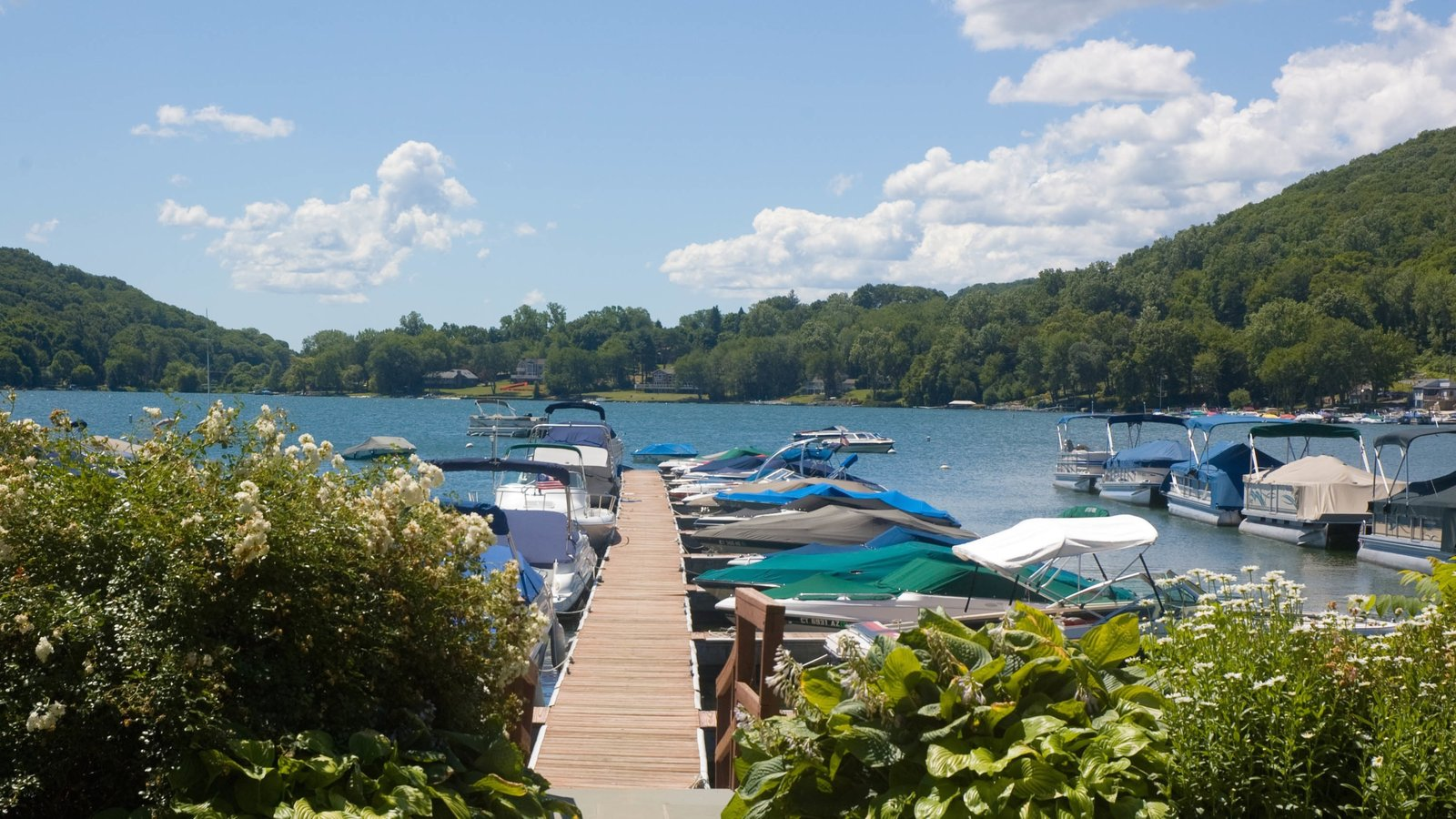 Danbury ofreciendo un lago o abrevadero y una marina