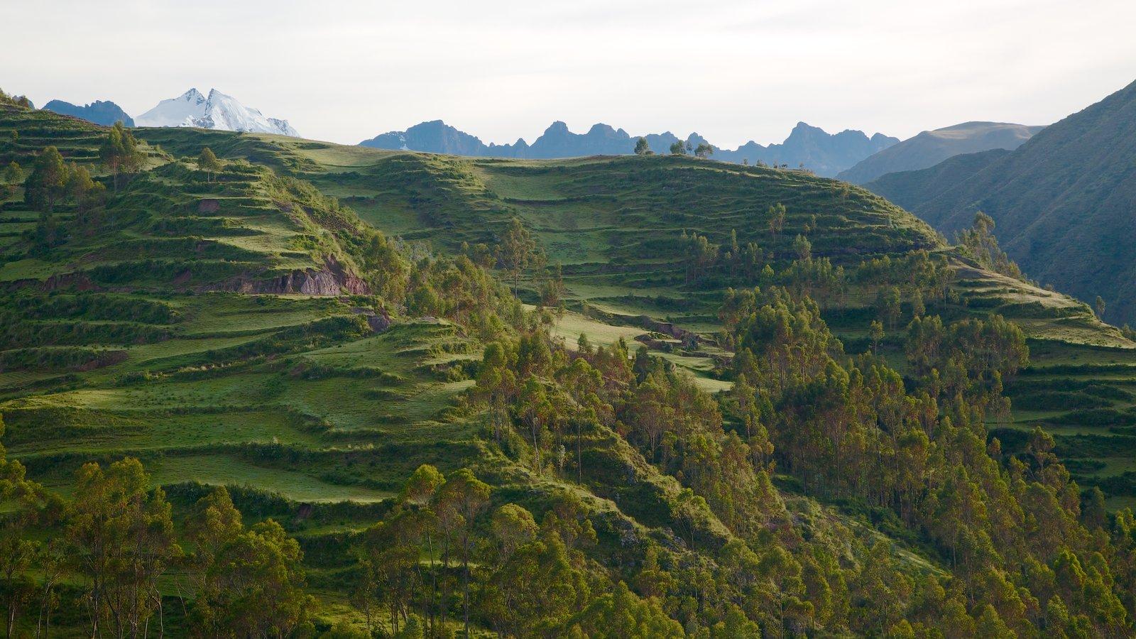 Chincheros caracterizando paisagem, montanhas e cenas tranquilas