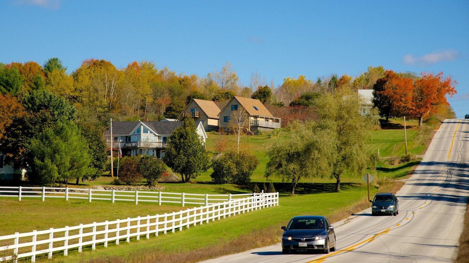 Bangor mostrando folhas de outono