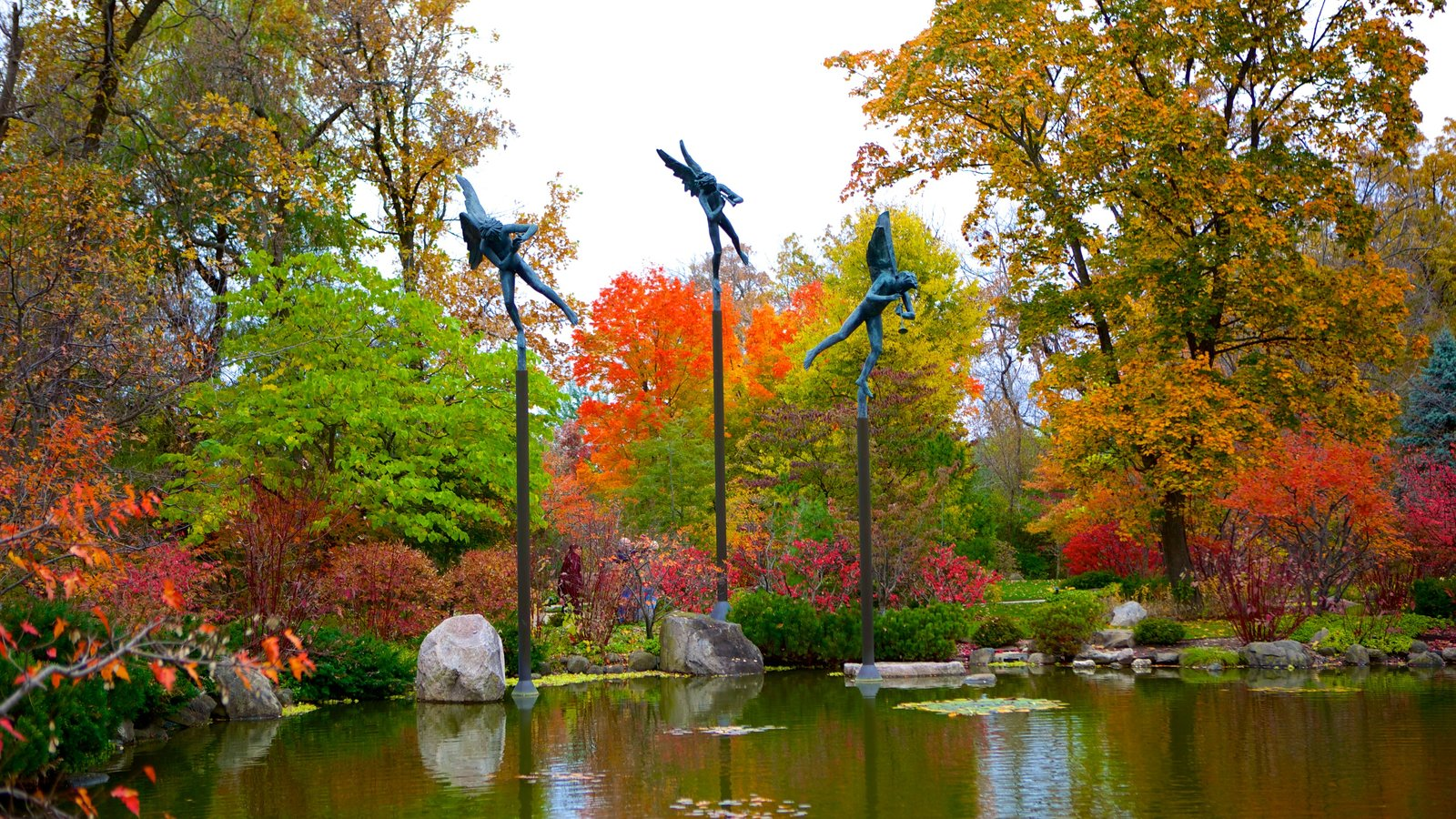 Anderson Japanese Gardens showing autumn leaves, a park and a pond