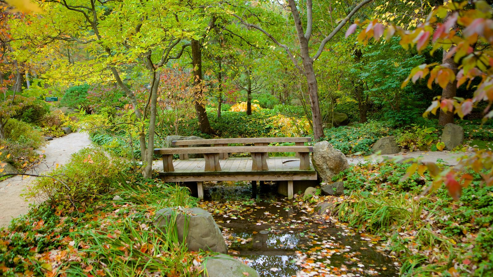 Anderson Japanese Gardens showing a park and a river or creek