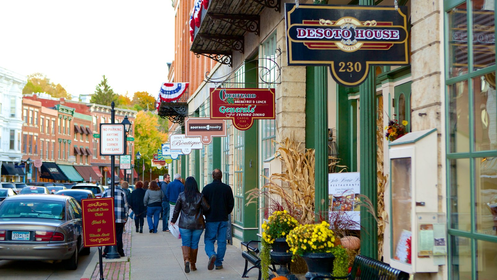 Galena featuring a city and signage