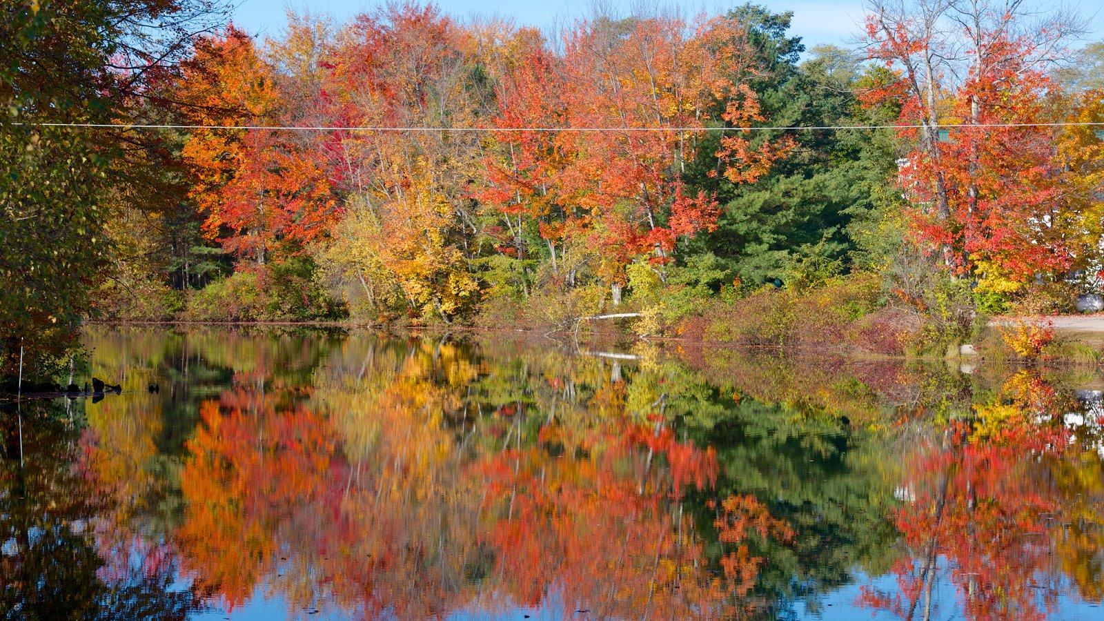Conway ofreciendo un río o arroyo y los colores del otoño