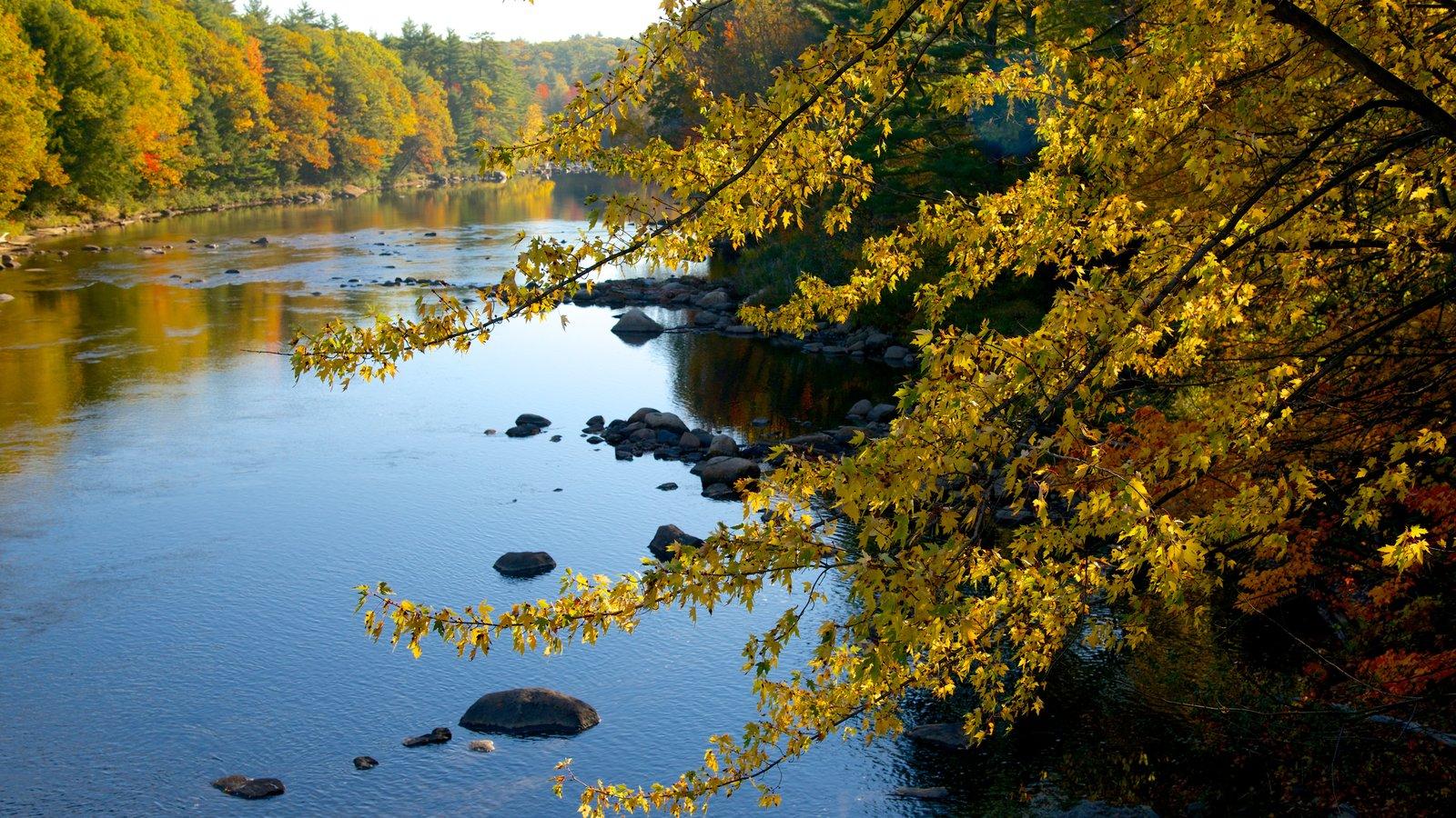 Conway mostrando los colores del otoño, un río o arroyo y un parque