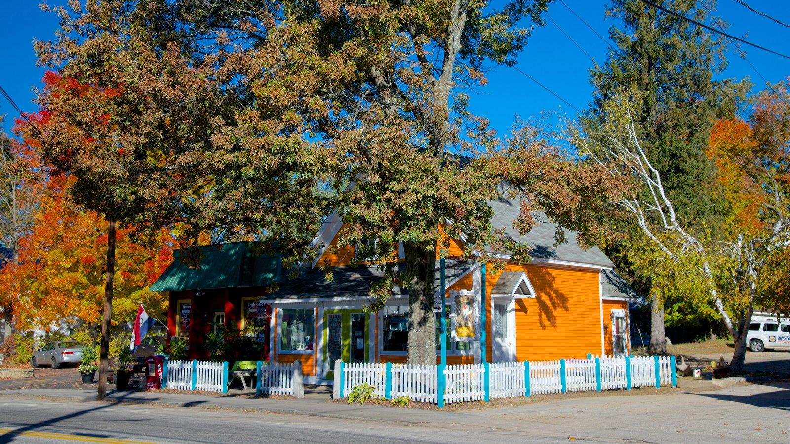 Conway caracterizando folhas de outono e uma cidade pequena ou vila