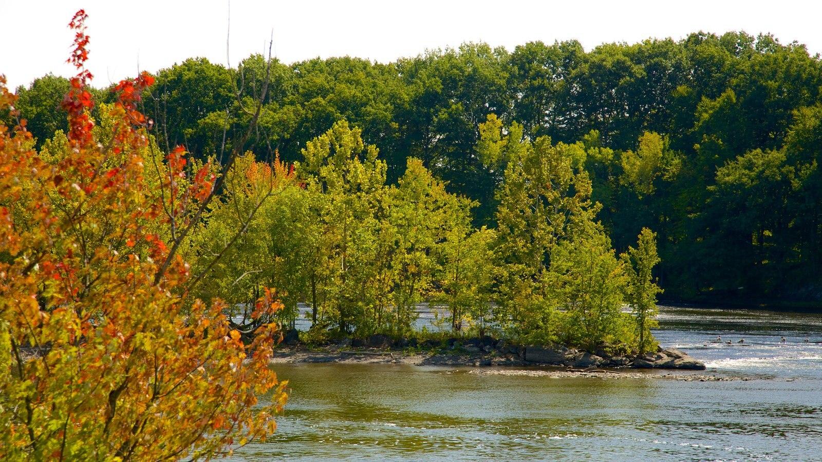 Stillwater mostrando los colores del otoño, escenas tranquilas y un río o arroyo