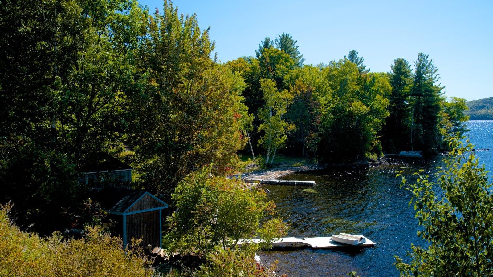 Maine que incluye un lago o abrevadero y bosques