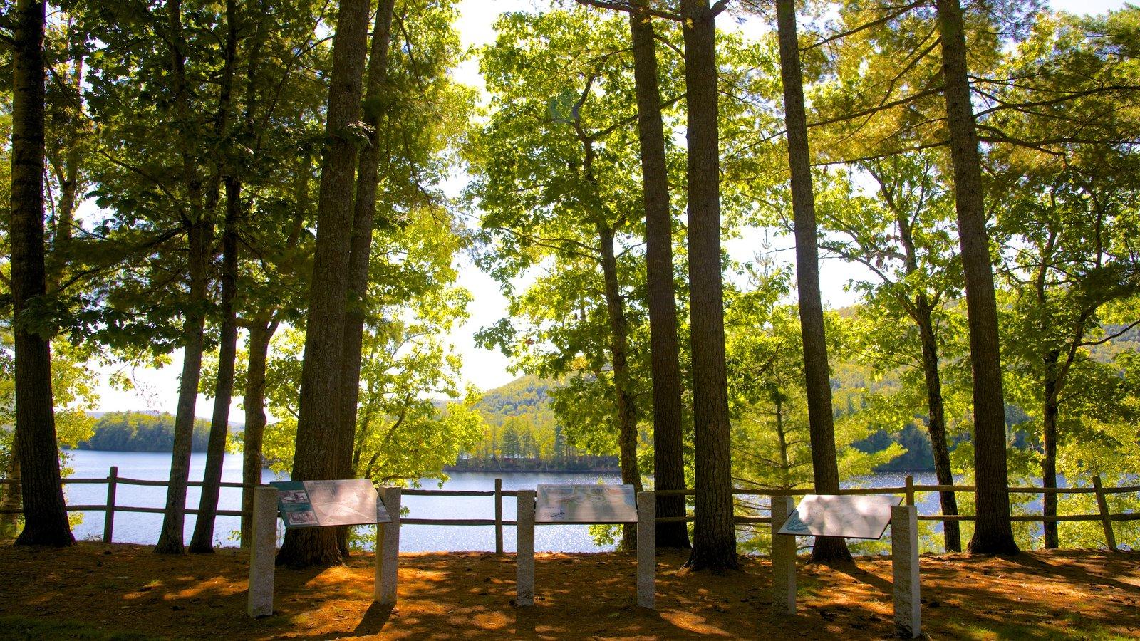 Maine mostrando un lago o abrevadero y escenas tranquilas