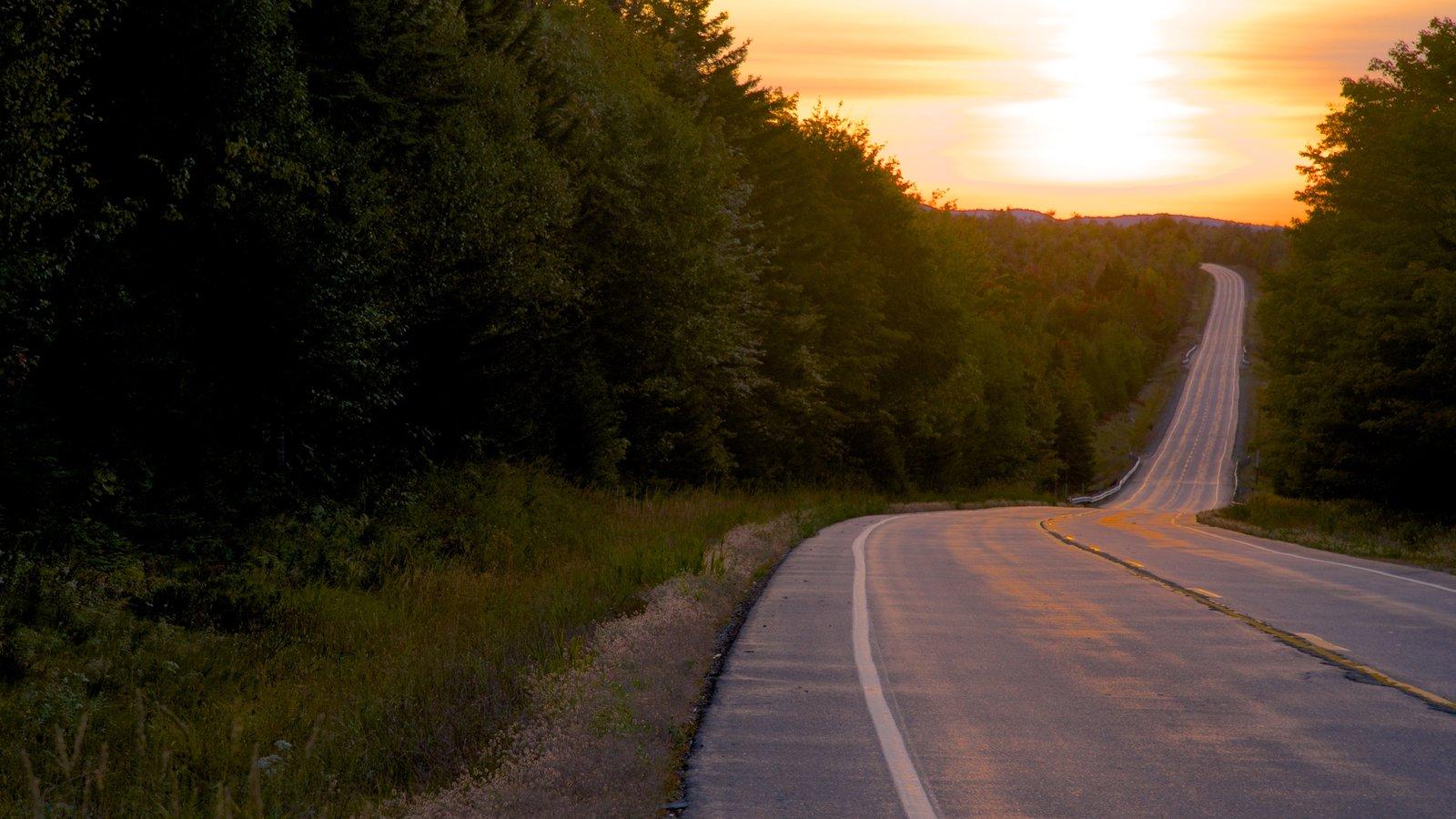 Maine mostrando una puesta de sol, bosques y escenas tranquilas