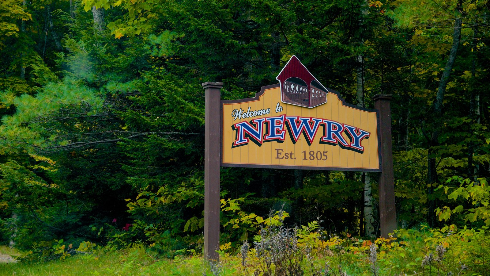 Maine featuring signage and forests