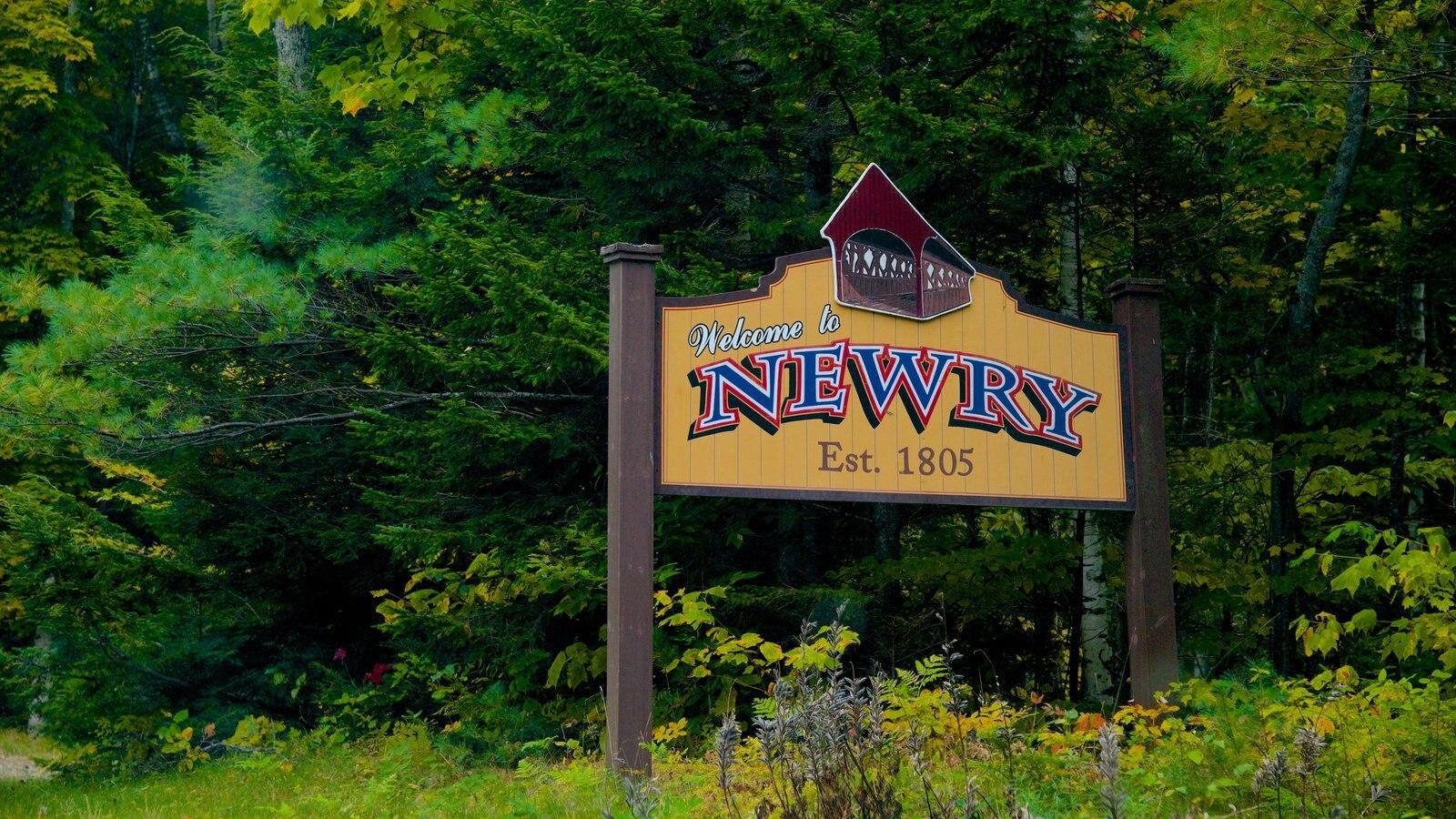 Maine ofreciendo señalización y bosques