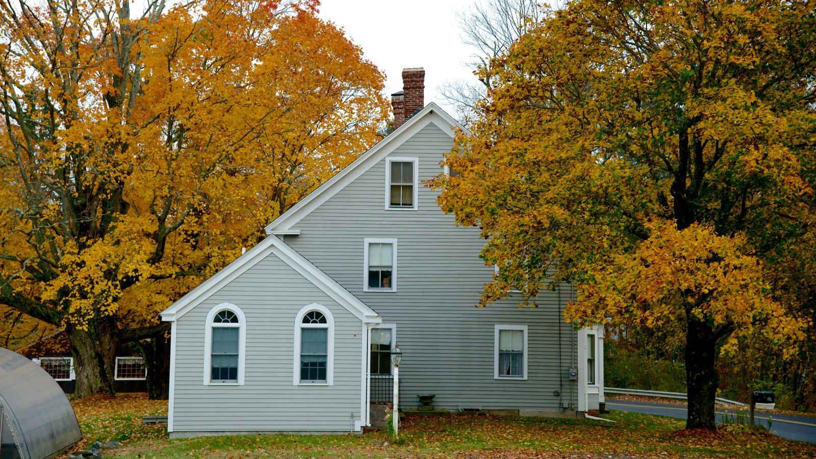 Massachusetts featuring fall colors and a house