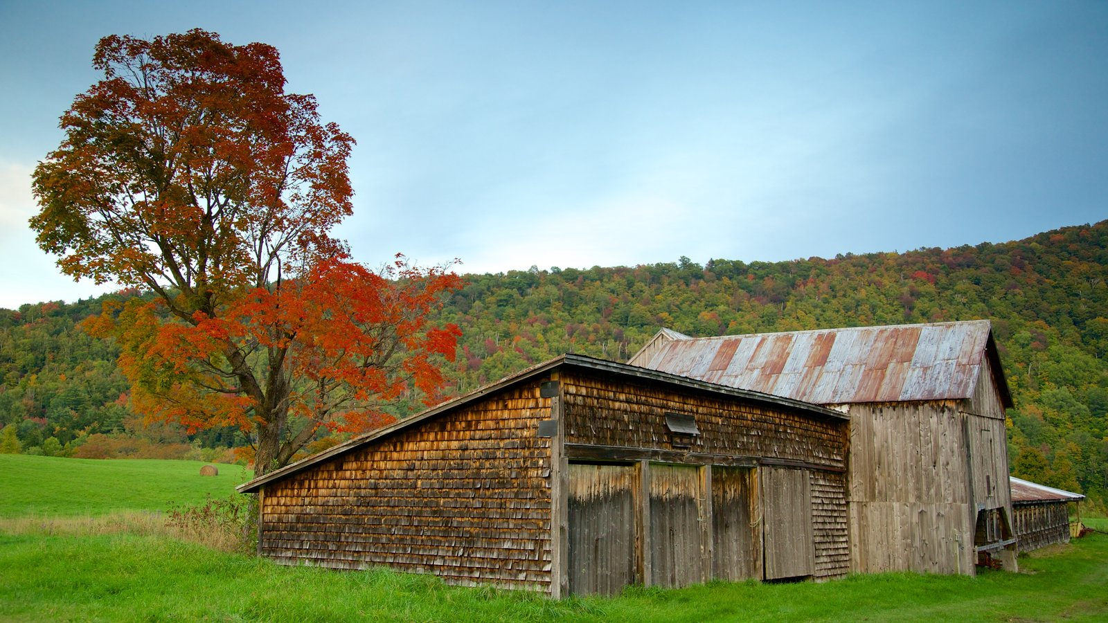 Vermont que incluye los colores del otoño