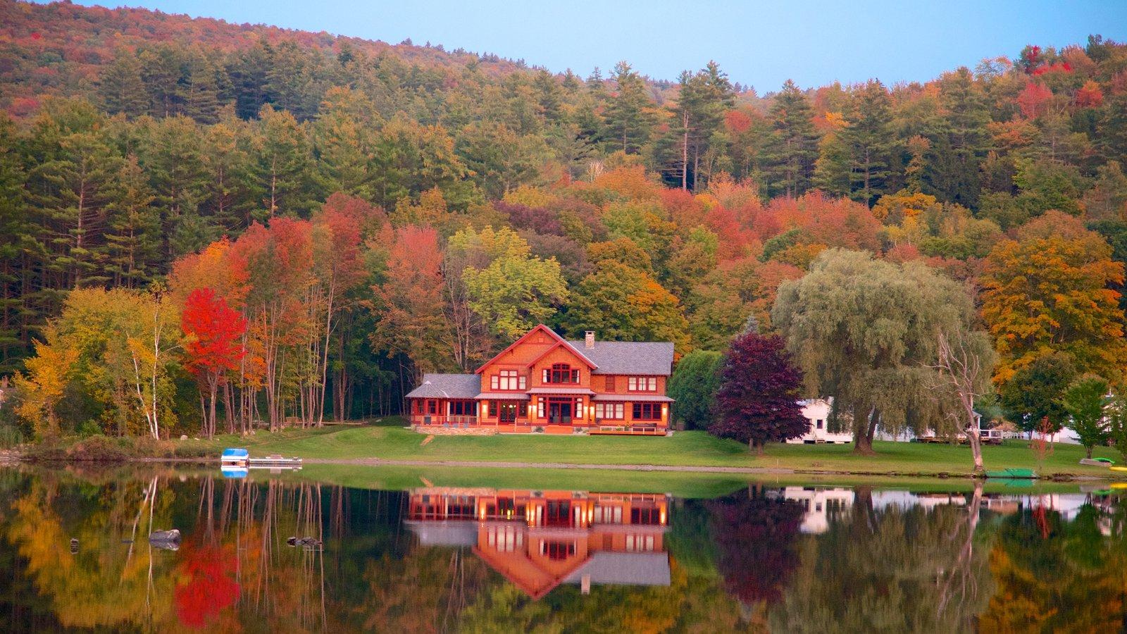 Vermont que incluye bosques, una casa y un lago o abrevadero