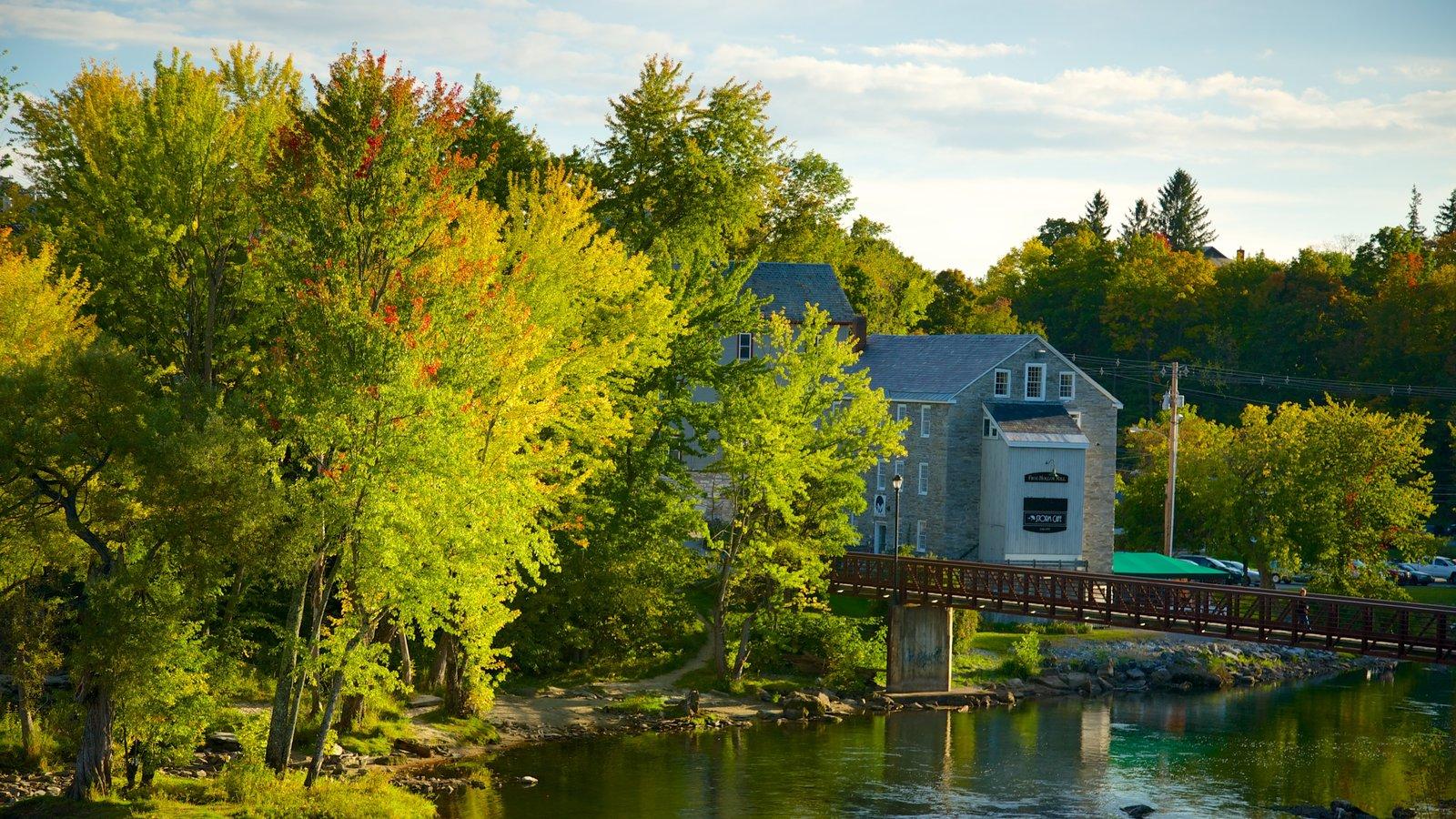 Vermont Septentrional que incluye un río o arroyo y bosques