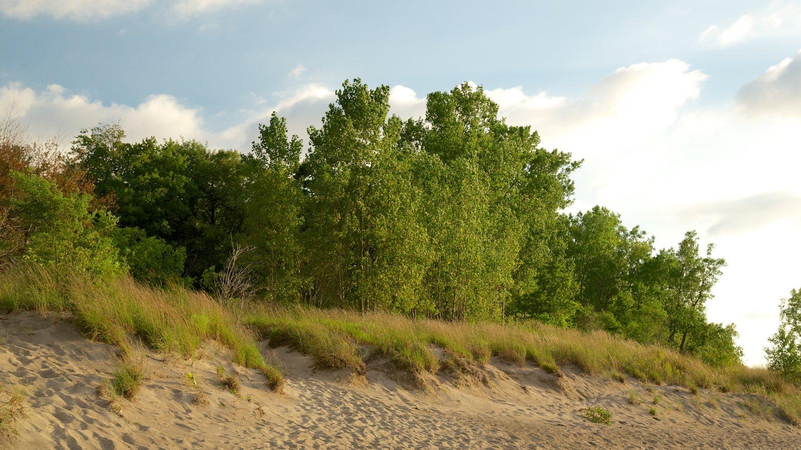 Erie caracterizando uma praia de areia e cenas tranquilas