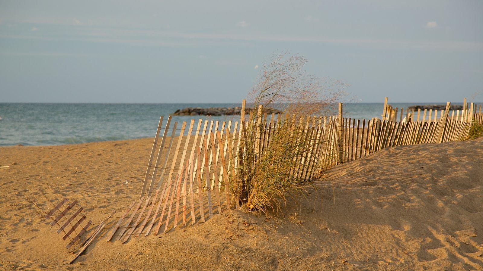 Erie caracterizando uma praia