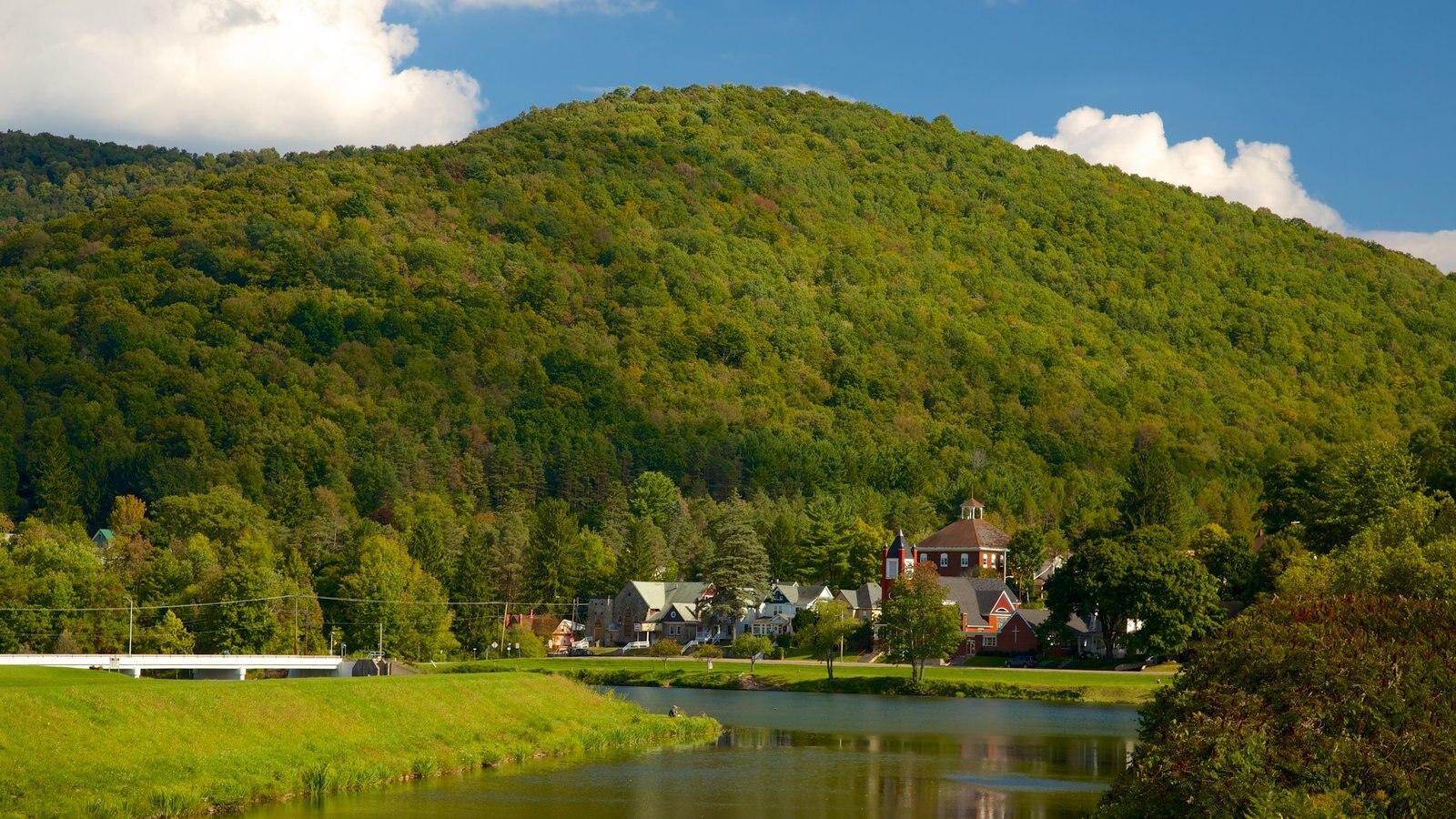 Galeton caracterizando paisagem, cenas tranquilas e um lago ou charco