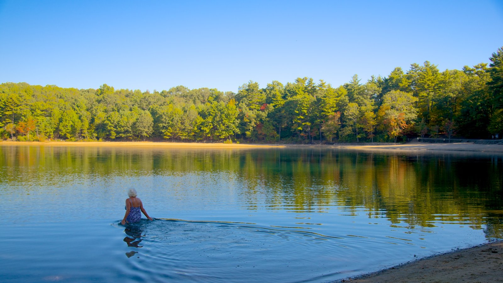 Walden Pond showing landscape views and a lake or waterhole as well as an individual femail