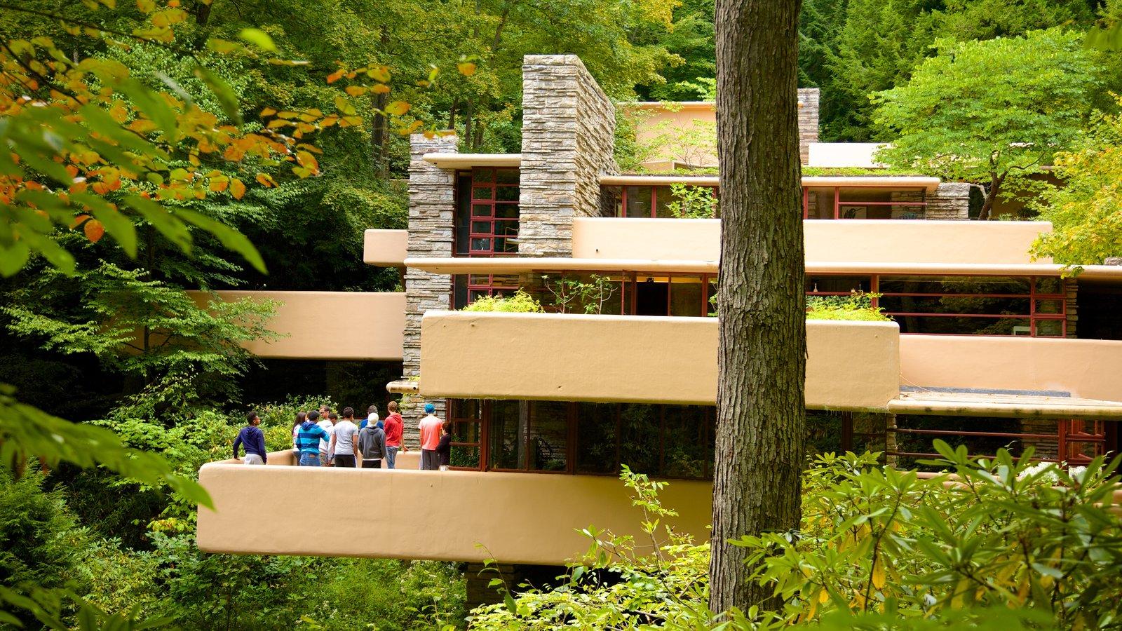 Fallingwater mostrando arquitetura moderna e floresta tropical assim como um pequeno grupo de pessoas