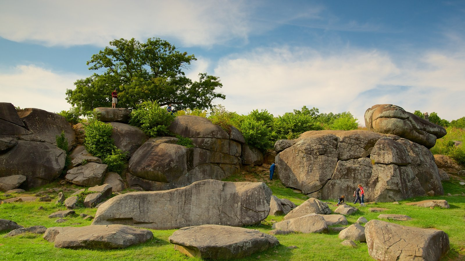 Gettysburg National Military Park mostrando um parque assim como um pequeno grupo de pessoas