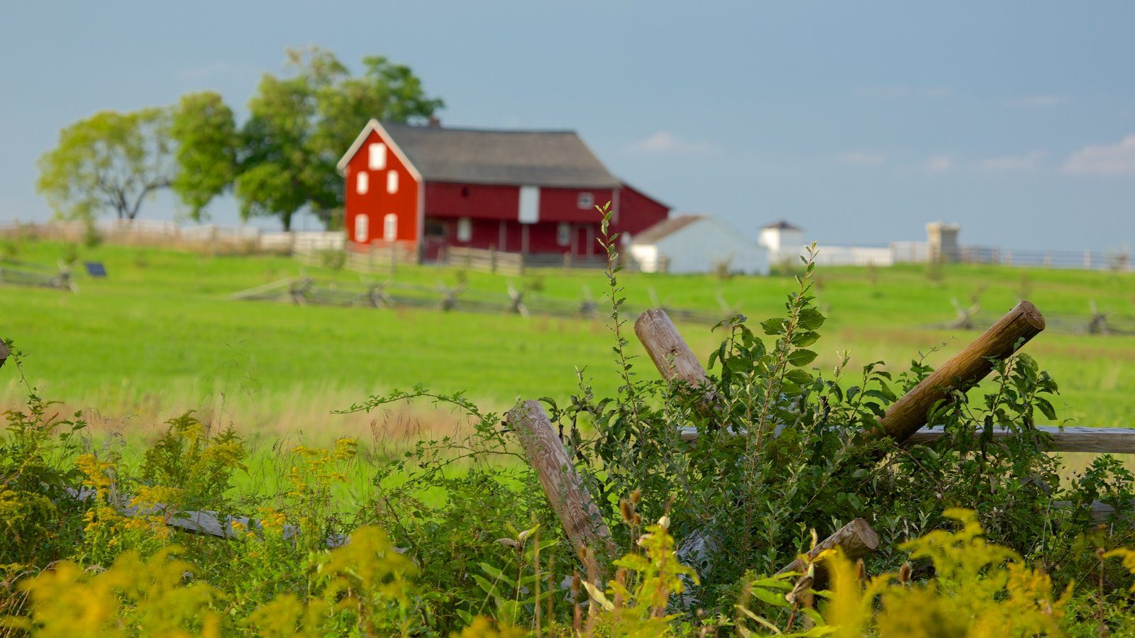 Gettysburg National Military Park showing tranquil scenes and landscape views
