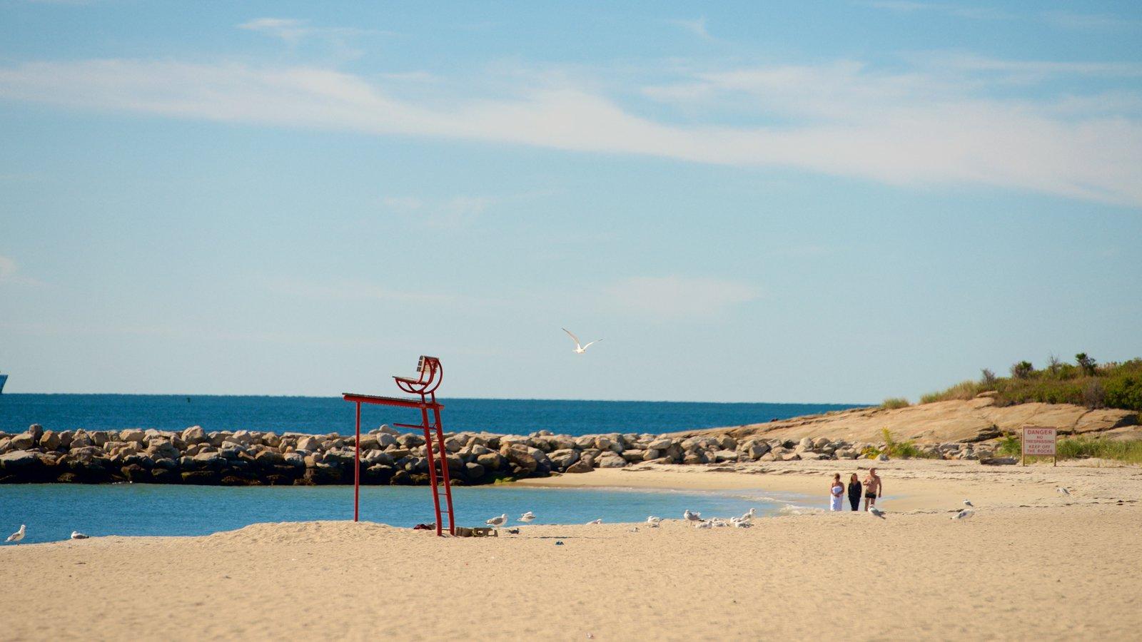 Ocean Beach Park Featuring A