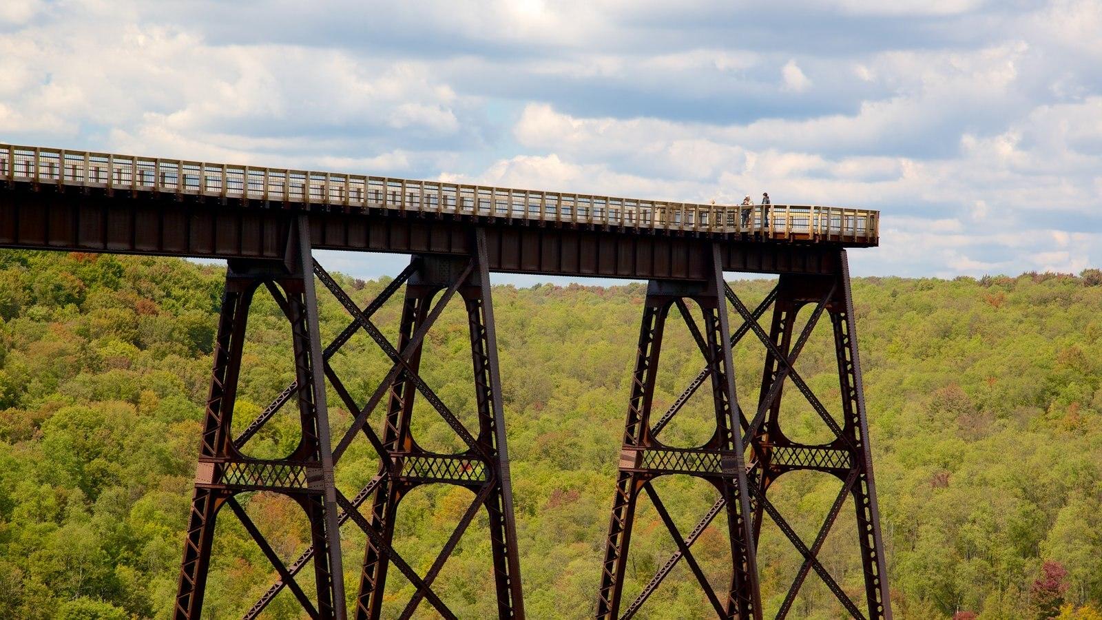 Noroeste de Pensilvânia que inclui paisagens, cenas de floresta e uma ponte