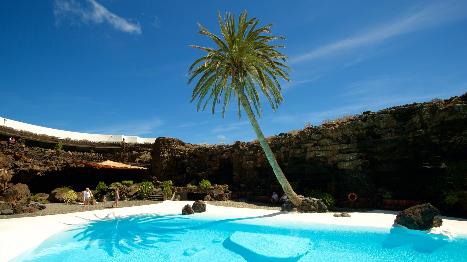 Jameos del Agua showing a pool and tropical scenes