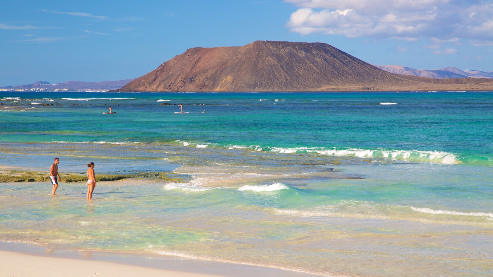 Corralejo Beach featuring general coastal views, swimming and a beach