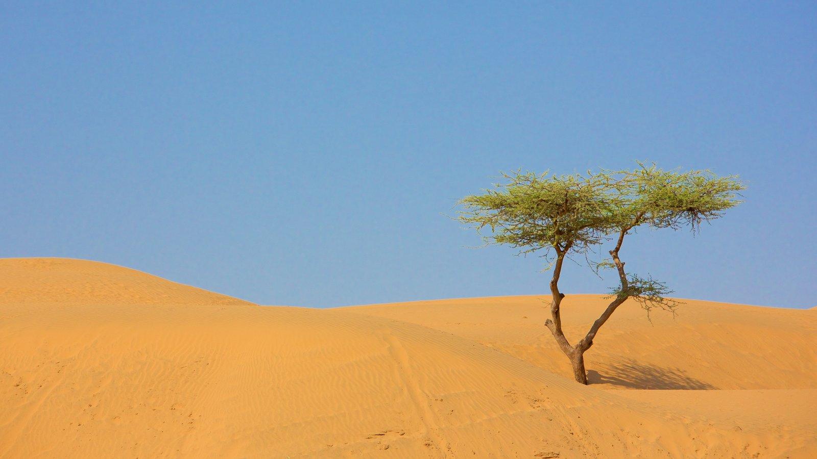 Rajasthan featuring desert views