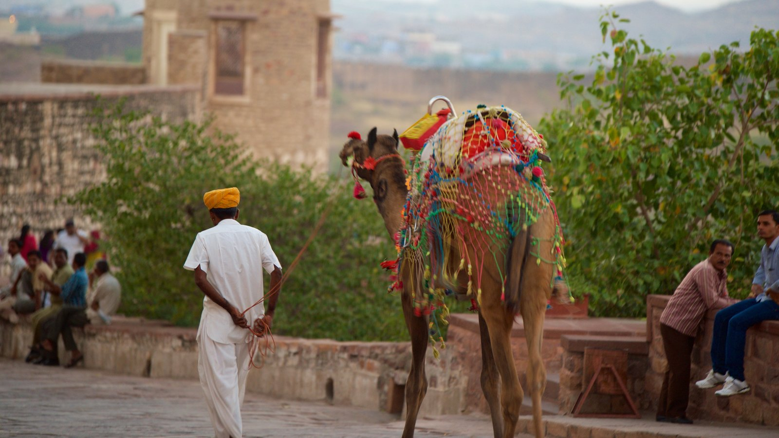 Mehrangarh Fort ofreciendo animales terrestres y también un hombre