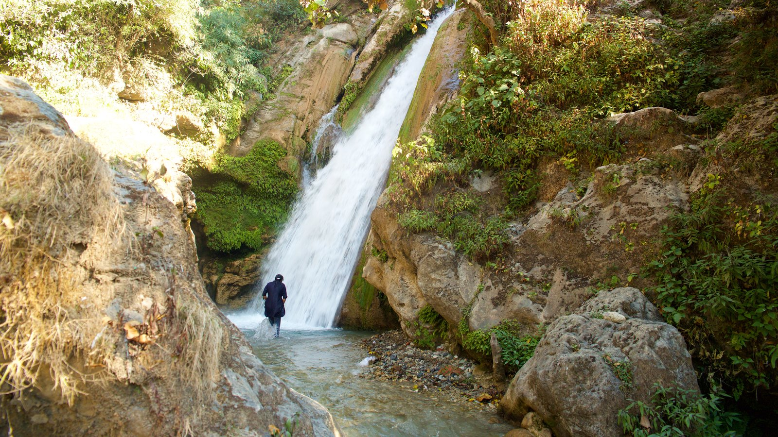 Bhata Falls featuring tranquil scenes and a cascade