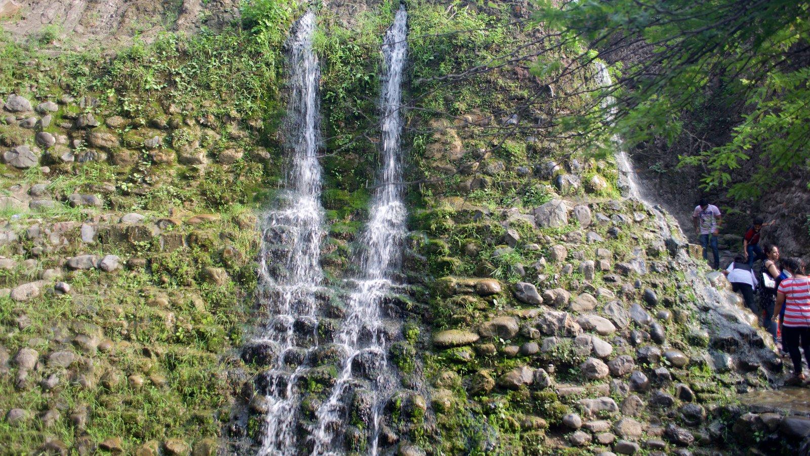 Rock Garden Featuring A Garden And A Waterfall