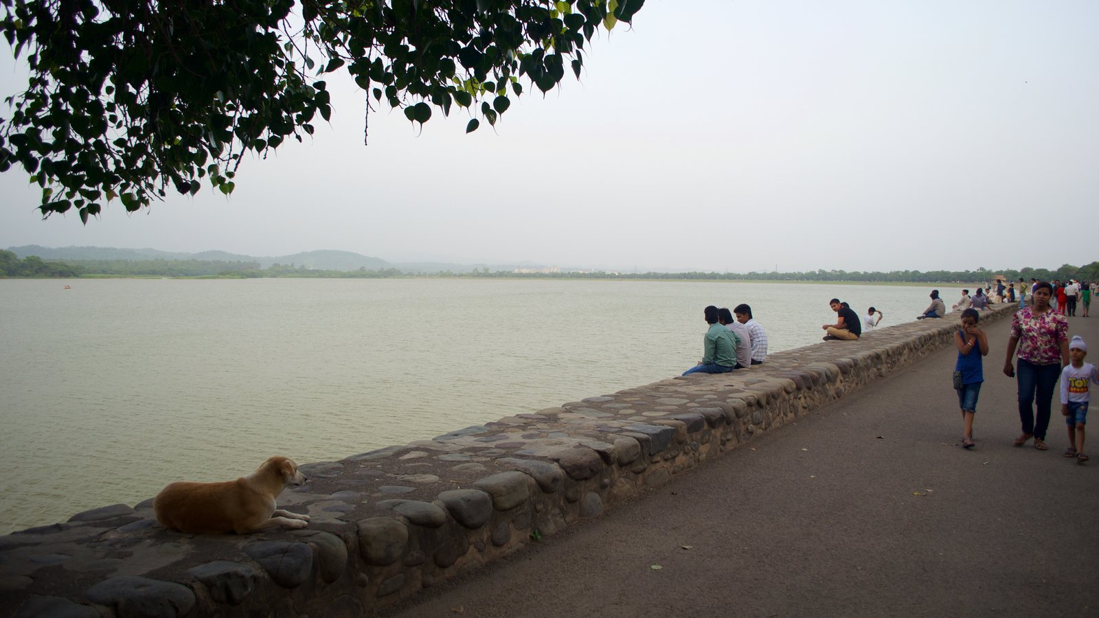 Sukhna Lake featuring a lake or waterhole as well as a small group of people