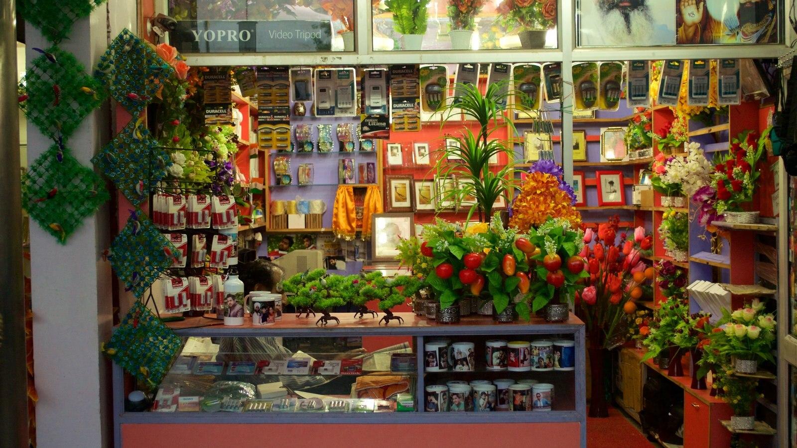 Sukhna Lake featuring shopping