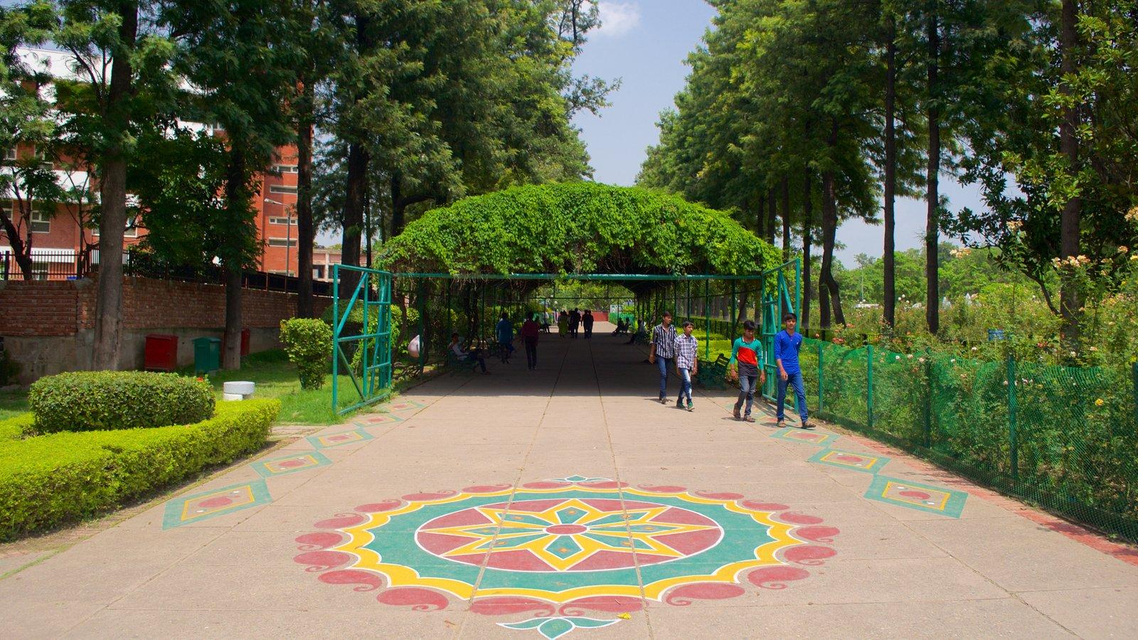 Zakir Rose Garden Pictures View Photos And Images Of Zakir Rose Garden