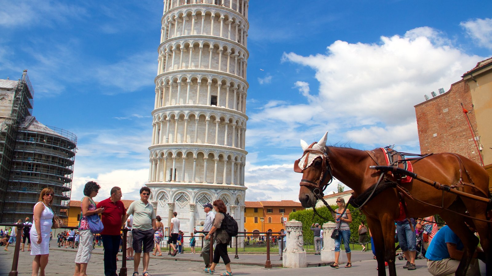 Leaning Tower showing heritage architecture, a monument and land animals