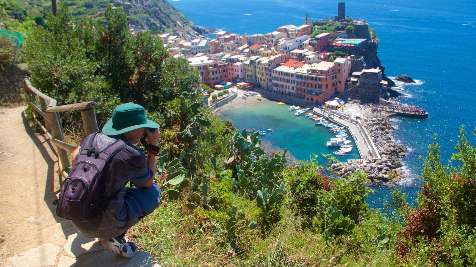 Cinque Terre featuring a coastal town, general coastal views and a bay or harbor