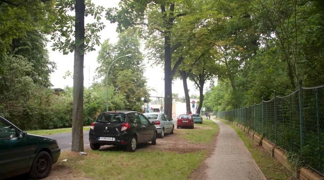 Sanssoucin puisto joka esittää puutarha