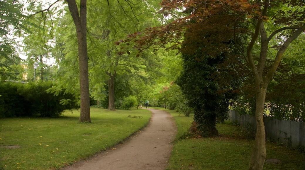 Sanssoucin puisto joka esittää puisto
