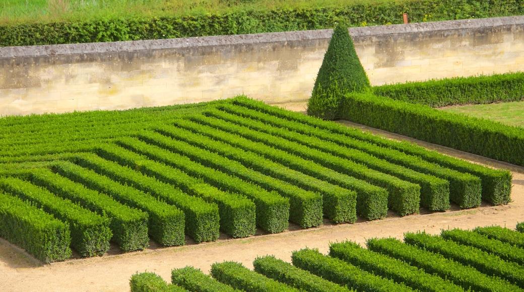 Maastricht showing a garden